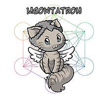Meowtatron Photographic Print
