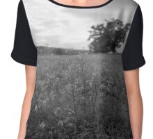 Cow Parsley and the Old Tree Chiffon Top
