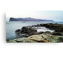 Waves to the rocks Canvas Print