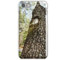 Moss-Covered Branch iPhone Case/Skin