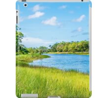 Up the River, Down the River iPad Case/Skin
