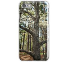 Trunk of the Tree iPhone Case/Skin