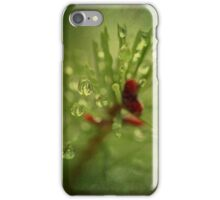 Drops on Pine Needles iPhone Case/Skin