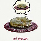 Cat Dreams by PETER GROSS
