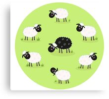 One black sheep is lonely in the middle of white sheep family Canvas Print
