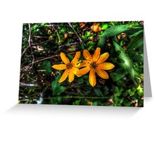 Friends Stay Close Greeting Card