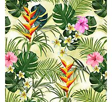 Tropical pattern with flowers Photographic Print