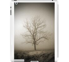 Smoky Mountains Scene-011287 iPad Case/Skin