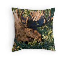 Grazing Moose Throw Pillow