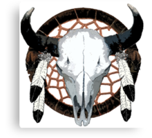Buffalo skull  Canvas Print