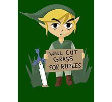 Legend of Zelda - Link - Cut Grass for Rupees Photographic Print