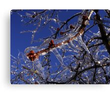 Shining branches Canvas Print