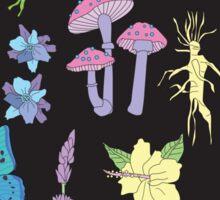 Garden Witch Sticker