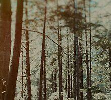 Oregon Woods by Leah Flores
