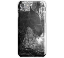 Shire in the cold iPhone Case/Skin