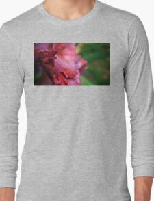Water Droplets on Pink Gladiolus Petals Long Sleeve T-Shirt
