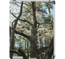 Looking Up the Trunk iPad Case/Skin