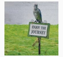 Blue Jay, Enjoy Your Journey Sign, Life Is Good, Nature, Birds T-Shirt