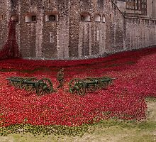 Sea of Poppies  by yampy