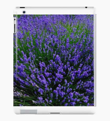 The Intensity Of Lavender Flowers iPad Case/Skin