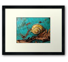 Yellow Snail House Framed Print