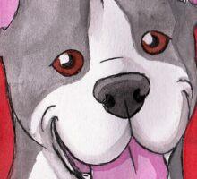 Pit Bull / Staffie Heart Sticker