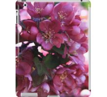 Pink Apple Blossoms iPad Case/Skin