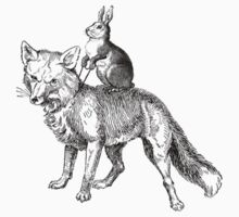 The Rabbit Tames The Fox by Matt West