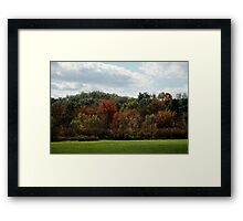 Autumn - One Tree at a Time Framed Print