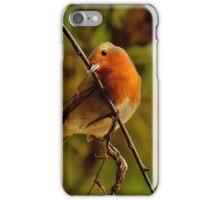 ROBIN BIRDS iPhone Case/Skin