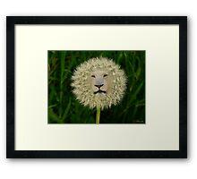 ☝ ☞DANDELION PICTURE/CARD~ DANDY LION LOL☝ ☞ Framed Print