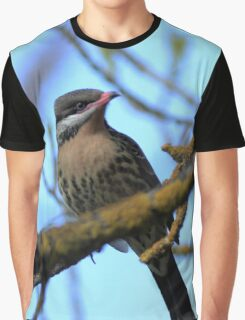 Spiny Cheeked Honeyeater -Acanthagenys rufogalaris Graphic T-Shirt