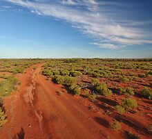 Red Dirt Road - Kilcowera Station by Malcolm Katon