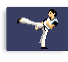 Kung Fu Canvas Print
