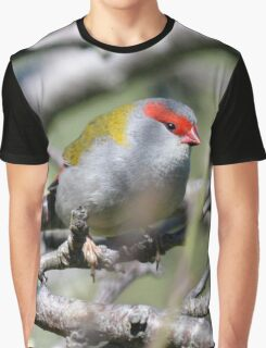 Red Browed Finch - Neochmia temporalis Graphic T-Shirt