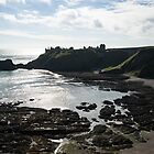 Dunnottar Castle Scotland Low Tide by Georgia Mizuleva