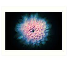 Abstrac beautiful flower background Art Print