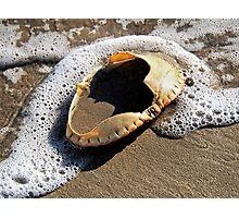 Empty Crab Shell Photographic Print
