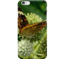Flitting About iPhone Case/Skin