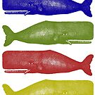 Vintage Sperm Whale illustration by monsterplanet