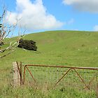 Green Foothills by Chris Kean