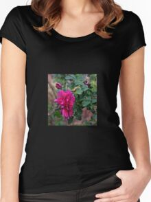 And there was the Rose........ Women's Fitted Scoop T-Shirt