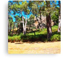 Looking up at the rock - Hanging Rock, Woodend VIC Australia Canvas Print