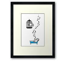 Empty Cage Framed Print
