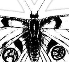 Butterfly; sketch; freehand drawing Sticker