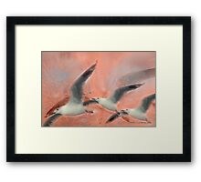 Wings Float © Vicki Ferrari Framed Print