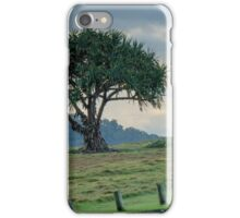 Lone Tree at Hastings Point, NSW iPhone Case/Skin