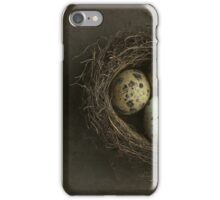 Birds Nest and Eggs iPhone Case/Skin