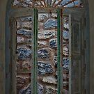 Window by dedakota