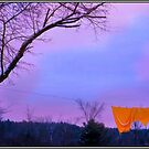 Orange Bedspread on Winter Line by Wayne King